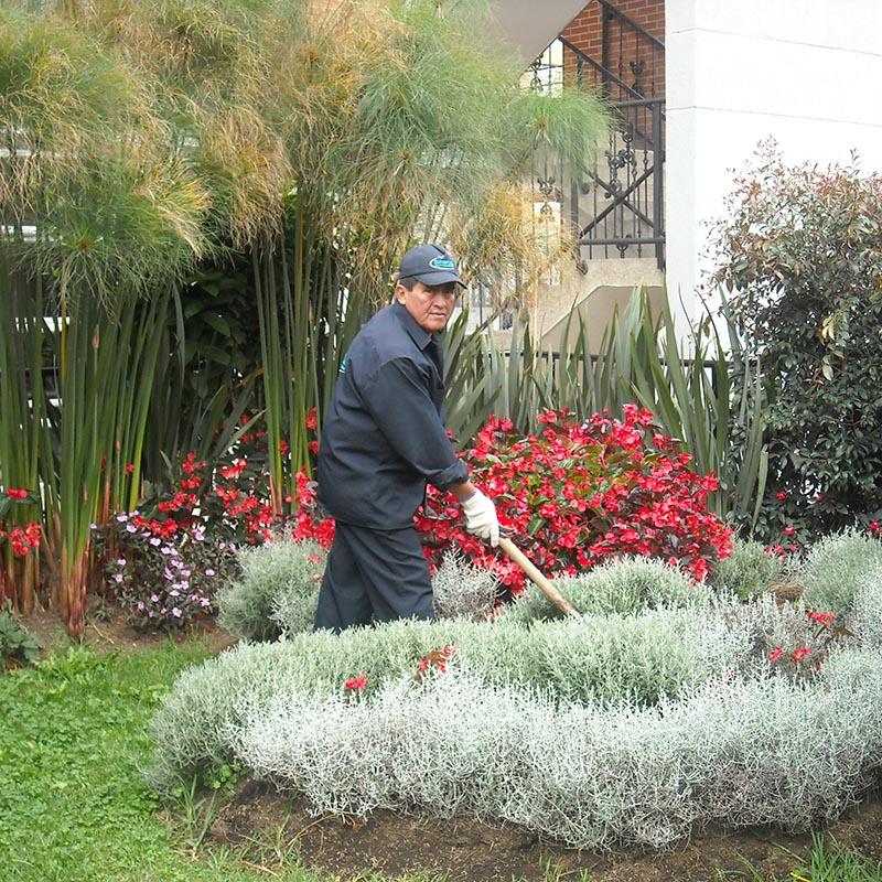Embellecimiento de Jardines
